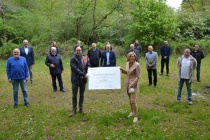 Prämie zum Umbau des Waldes